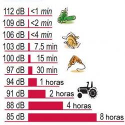 www.saludmedica.com/articulo/audicion-es-vida